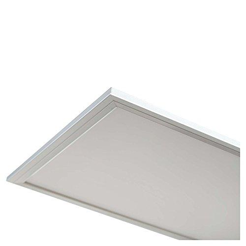 LEDUS LED Panel Lampe 40W, 300 x 1200 (Tageslicht Weiß), hochwertig, Weiß (Energieeffizienzklasse A)